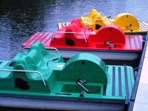 Paddle boats!!!
